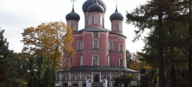 Донской монастырь в Москве (14 фото)