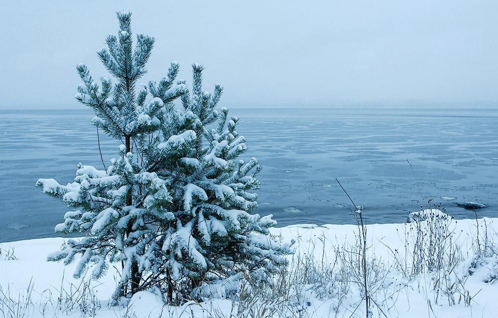 прекрасный зимний пейзаж