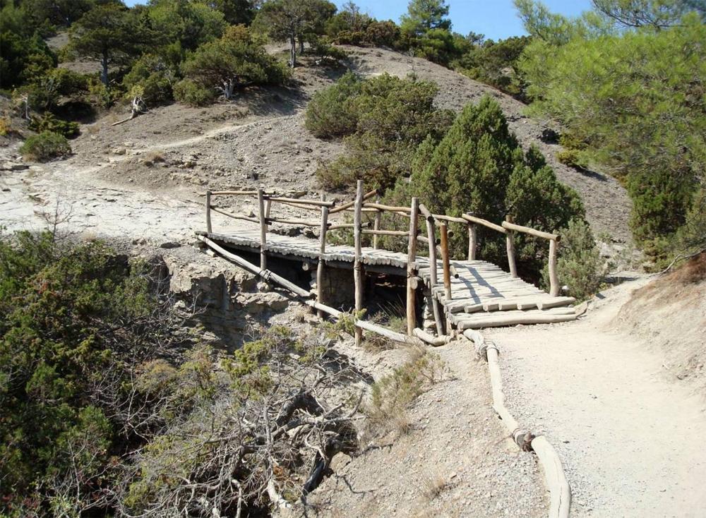 деревянный мост через овраг