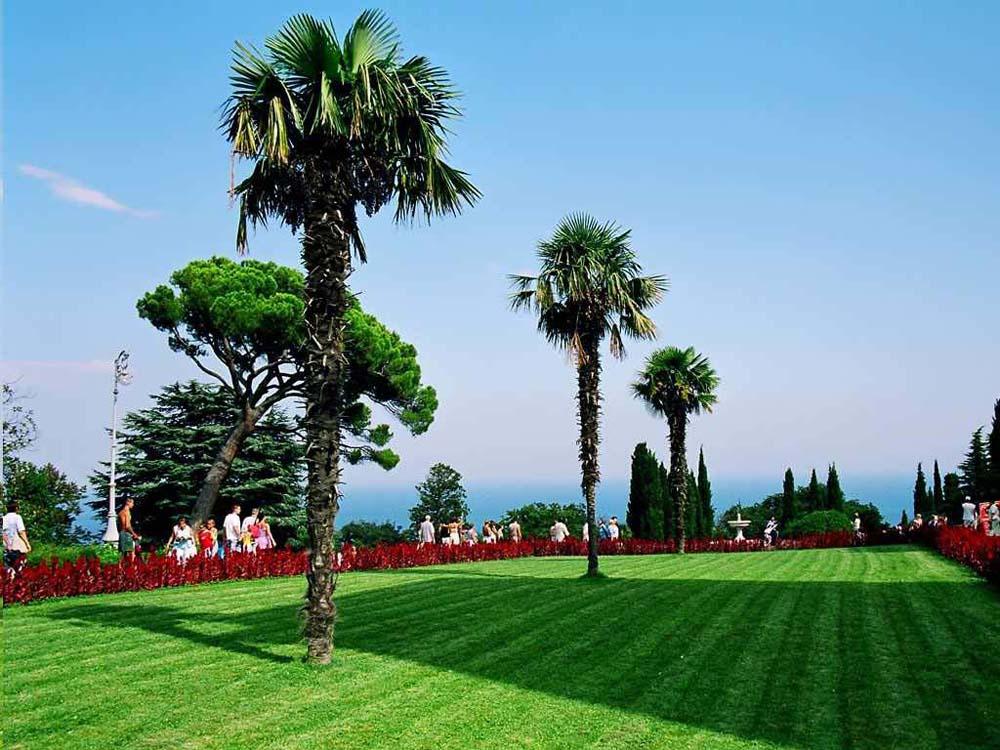 лужайка перед дворцом