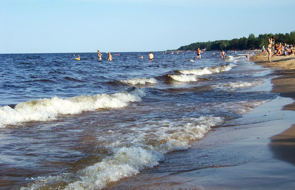 песочный пляж и волны