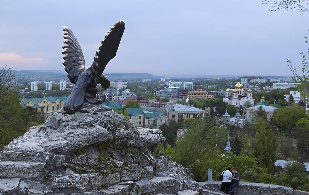 Орел на фоне города