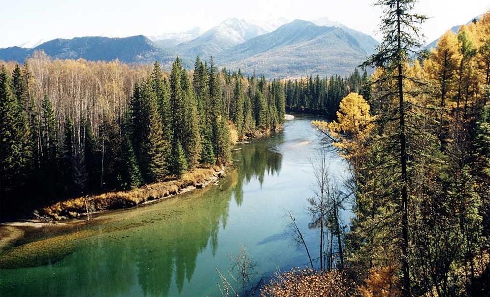 чистая река в окрестностях озера Байкал